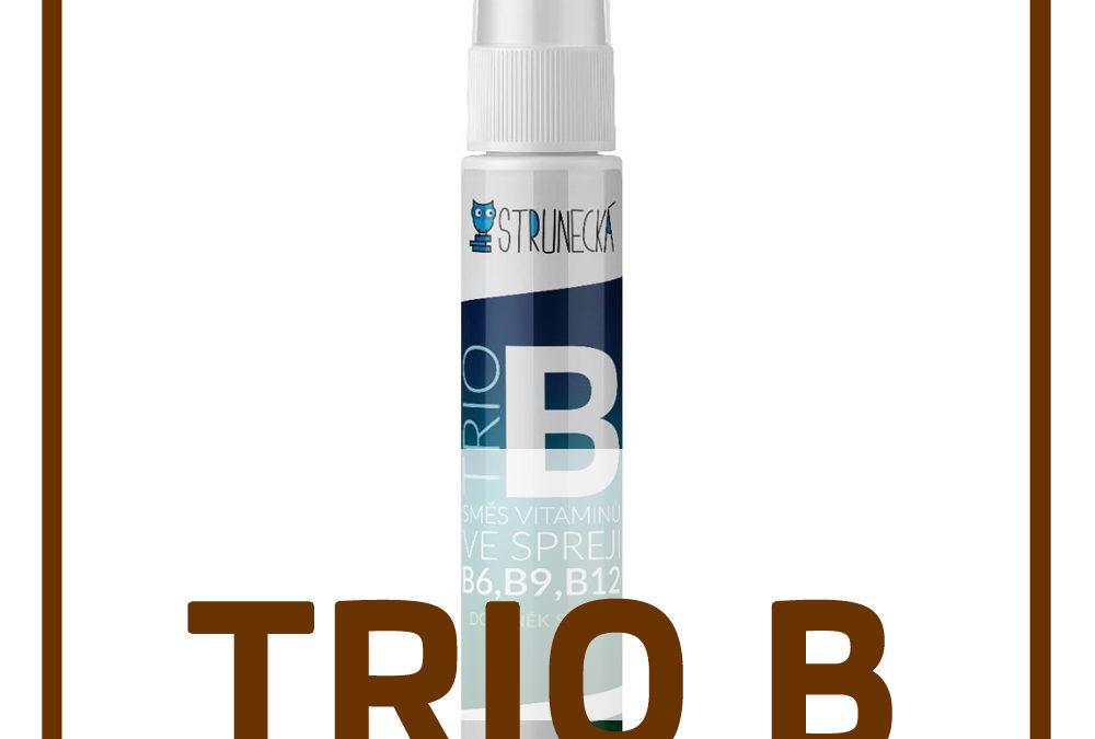 TRIO B – KOMBINACE VITAMÍNŮ B6, B9, B 12 – Receptura dle Prof. RNDr. Anny Strunecké, DrSc.